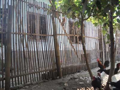 kontruksi-pagar-ayam-dari-bambu