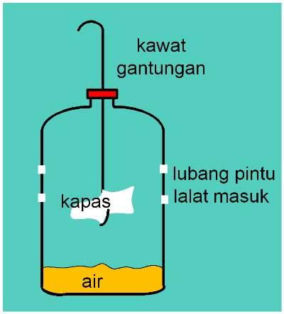 perangkap-lalat-botol-model-tegak