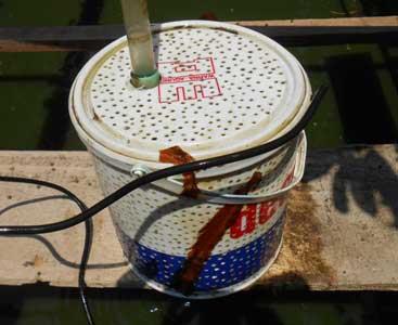 saringan-pompa-kolam-ember